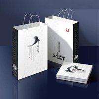 商场手提袋设计制作 手提袋印刷报价